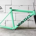VENTUS - เขียว CELESTE