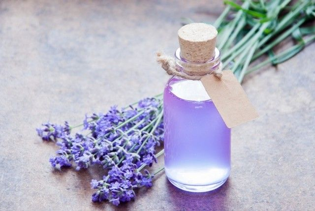 กลิ่น Lavender Spa 1kg.**