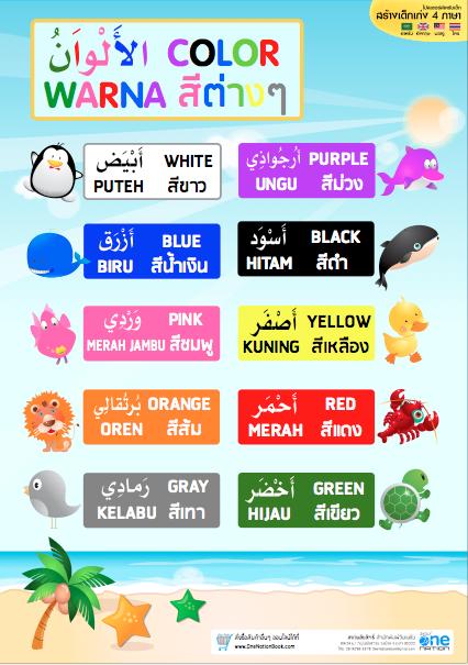 โปสเตอร์อนุบาล เรื่อง สีต่างๆ 4 ภาษา