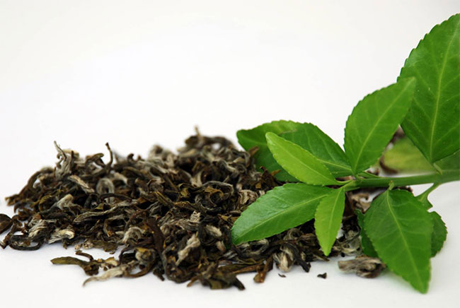 สารสกัดชาเขียว 50ml