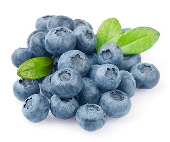 กลิ่น Blueberry 60ml.