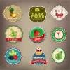 ฉลากอาหาร ของกิน สไตล์การออกแบบดีไซน์แบบใช้สีที่สดุดตา ฉลากไว้ใช้แปะกับแพคเกจอาหารแบบกล่อง,ผักออแกนิค,ห่อผลไม้ // ตัวอย่างดีไซน์ สติ๊กเกอร์ฉลาก Chill Shop Package