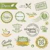 ฉลากอาหาร ของกิน สไตล์การออกแบบดีไซน์แบบเรียบๆแต่มีสไตล์ ฉลากไว้ใช้แปะกับแพคเกจผักออแกนิคไร้สารเคมี // ตัวอย่างดีไซน์ สติ๊กเกอร์ฉลาก Chill Shop Package