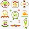 ฉลากอาหาร ของกิน สไตล์การออกแบบดีไซน์แบบเรียบๆแต่มีสไตล์ ฉลากไว้ใช้แปะกับแพคเกจบรรจุผัก,กล่องลังบรรจุผัก // ตัวอย่างดีไซน์ สติ๊กเกอร์ฉลาก Chill Shop Package