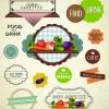 ฉลากอาหาร ของกิน สไตล์การออกแบบดีไซน์แบบเรียบๆแต่มีสไตล์ ฉลากไว้ใช้แปะกับแพคเกจอาหารแบบกล่อง // ตัวอย่างดีไซน์ สติ๊กเกอร์ฉลาก Chill Shop Package