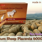 High Care Premium Sheep Placenta 60000 Plus Hyalunic Acid (120 Tablets)