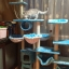 MU0065 คอนโดแมวแปดชั้น ขนาดใหญ่ ต้นไม้แมว มีบ้านอุโมงค์ เปลนอน กระบะนอน ของเล่นแขวน สูง 240-260 cm thumbnail 5