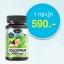 อาหารเสริม นมเม็ด AuswellLife Colostrum Tablet 1,000 mg. IgG 60 mg. 2 ขวด 120 เม็ด thumbnail 1