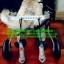 รถเข็นสำหรับสัตว์พิการ วีลแชร์หมา วีลแชร์แมว วีลแชร์สำหรับสัตว์เลี้ยงอายุมาก ขนาดเล็ก 2-4Kg 4-9Kg แบบ 2 ล้อ สำหรับขาหลัง thumbnail 18