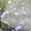 หัวพ่นหมอกแรงดันต่ำ ขนาด 0.5 mm ( หัวพลาสติก ) พร้อมข้อต่อตรง 10 หัว thumbnail 5