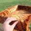 MU0165 คอนโดแมวสีชั้น ต้นไม้แมว อุโมงค์แมว ที่นอน ของเล่นแขวน 2 ชิ้น ลายเสือ thumbnail 4