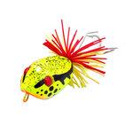 กบกระโดด wood jumper frog