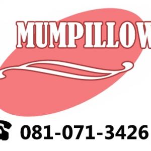 MumPillow หมอนสำหรับคนท้อง
